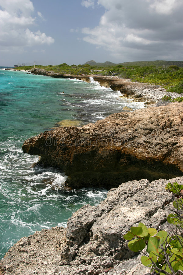Download Rough tropical coastline stock image. Image of blue, brown - 569481