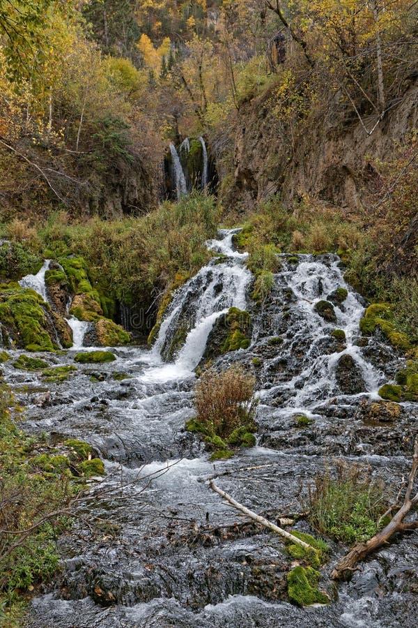Roughlack秋天,在秋天的真旗鱼峡谷 免版税库存图片