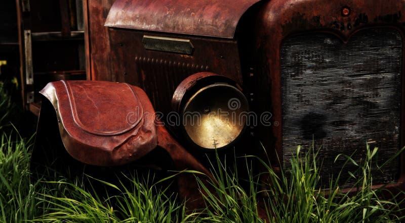 Rouille dans l'herbe grande photographie stock libre de droits