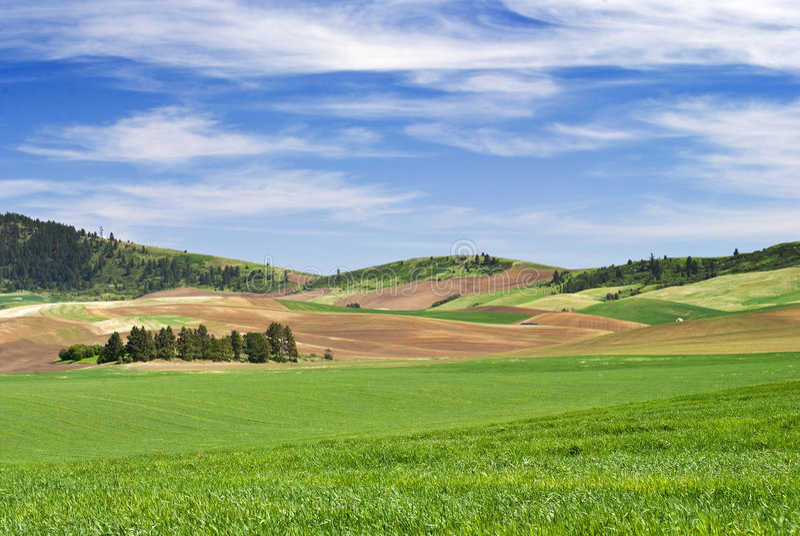 roulement de terres cultivables image stock