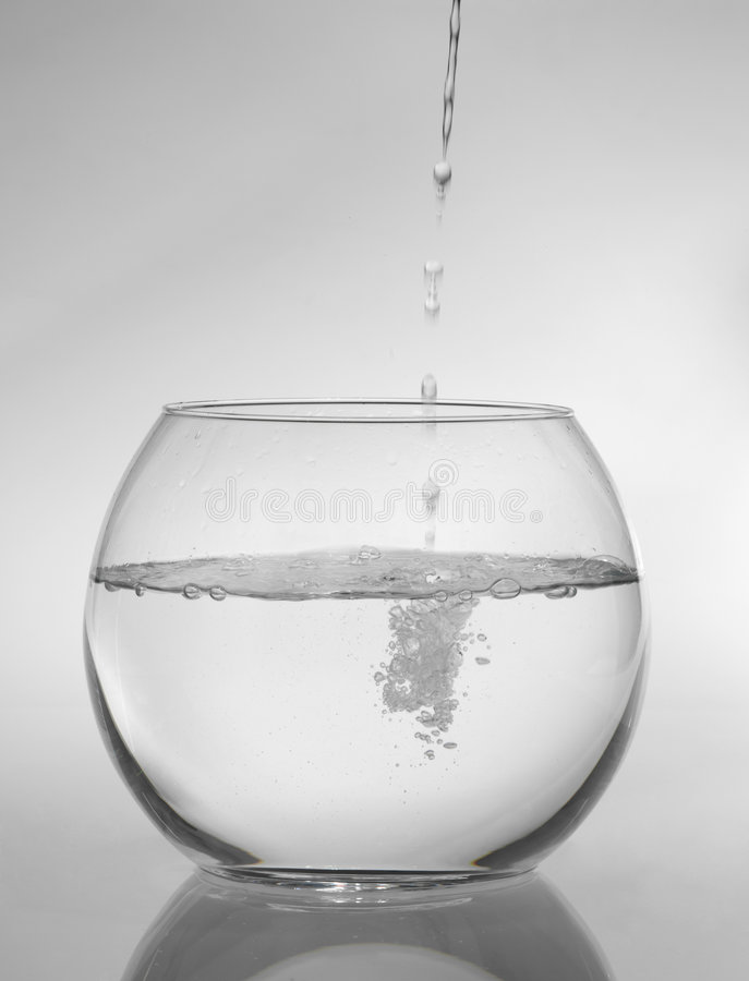 Round aquarium. On a white background royalty free stock image