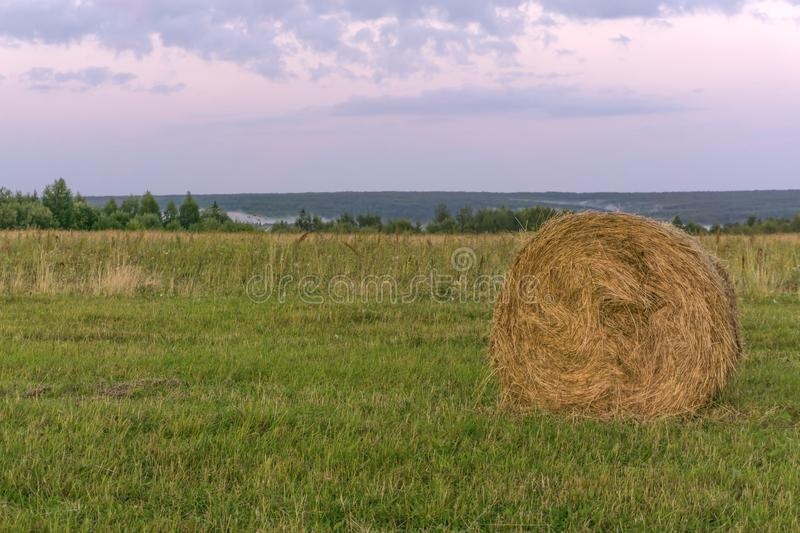 Round bale of hay on a beveled meadow. Large round bale of hay lays on a beveled meadow royalty free stock photos