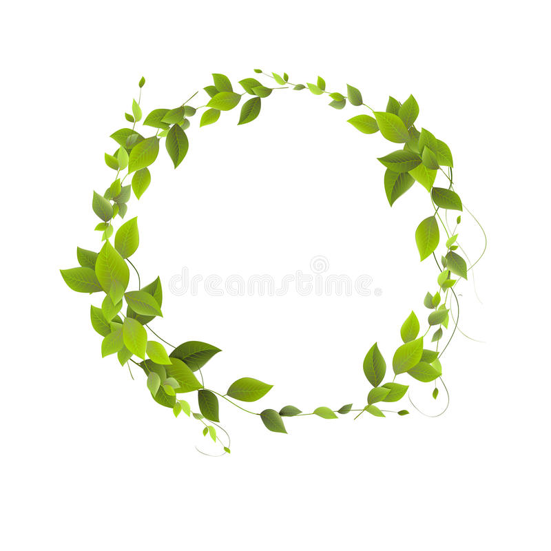 Round banner of branches with leaves. Green leaves in a circle. stock image