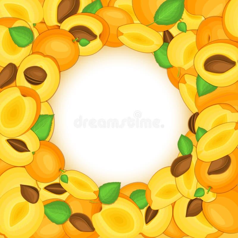 Round barwiona rama komponował wyśmienicie morele owocowe Wektor karciana ilustracja Okrąg dziury morel rama dojrzały ilustracja wektor