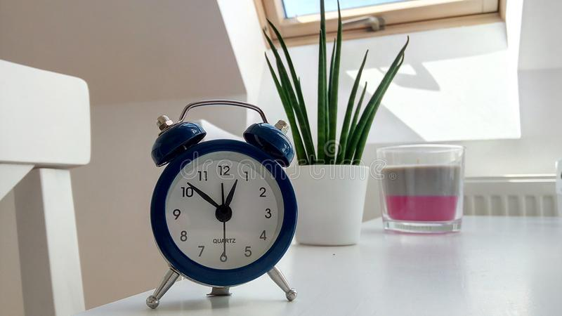 Round Blue Alarm Clock With Bell on White Table Near Snake Plant stock photos
