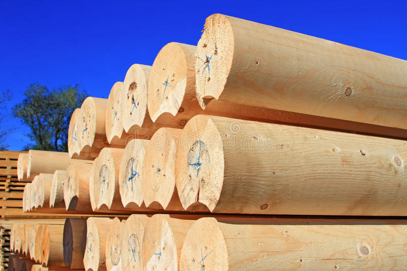 Download The Round Calibrated Building Bar From A Tree. Stock Image - Image: 26975621