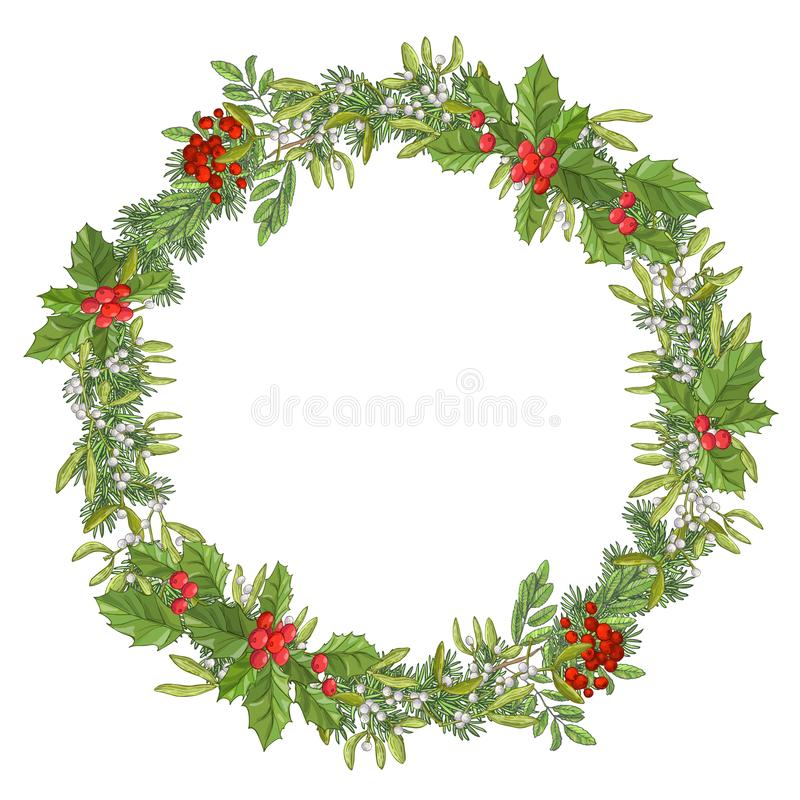 Round christmas garland. Holiday red berry with green leaves and mistletoe. Decorating for national Festive isolated on vector illustration