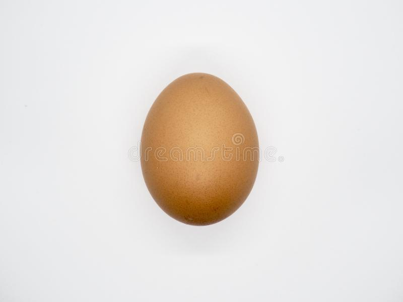 Chicken Brown Egg with white background stock photos