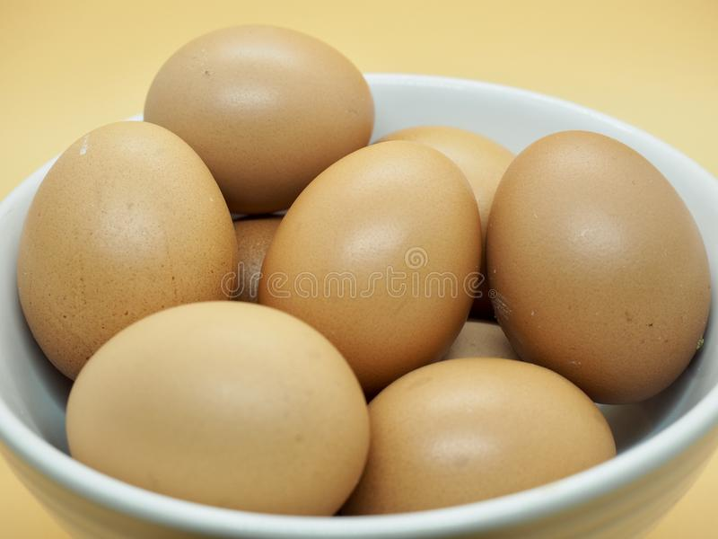 Many Chicken Brown Eggs in the White Bowl with orange background royalty free stock photo