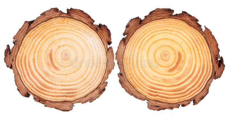 Round cut wood background stock images