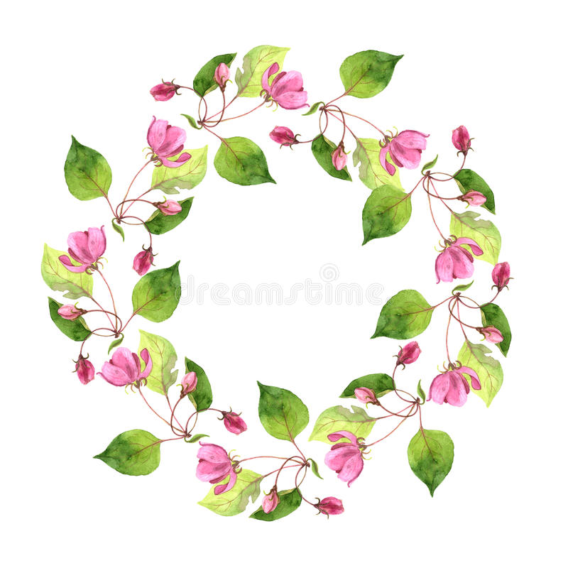 Round floral frame with pink apple tree flowers royalty free illustration