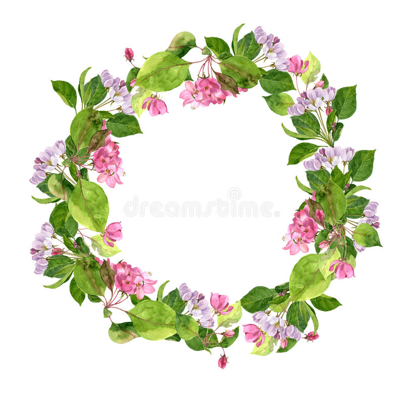 Round floral frame with pink apple tree flowers stock illustration