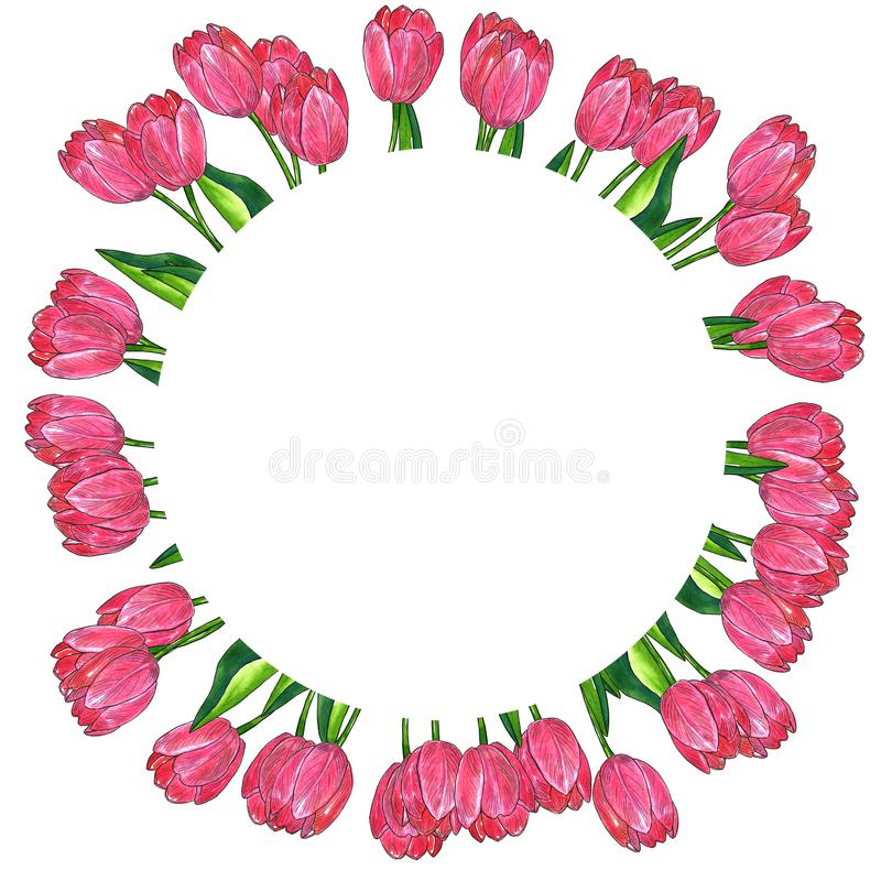 Round floral frame. Red pink tulips with leaves. Hand drawn watercolor and ink illustration. Isolated on white background royalty free illustration