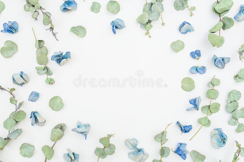 Round frame of blue flowers and eucalyptus on white background, Flat lay, Top view. Floral pattern. royalty free stock image