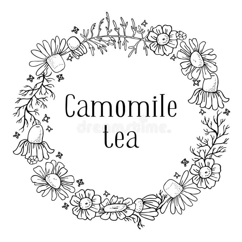 Round frame with camomile flowers. Hand drawn sketch vector illustration stock illustration