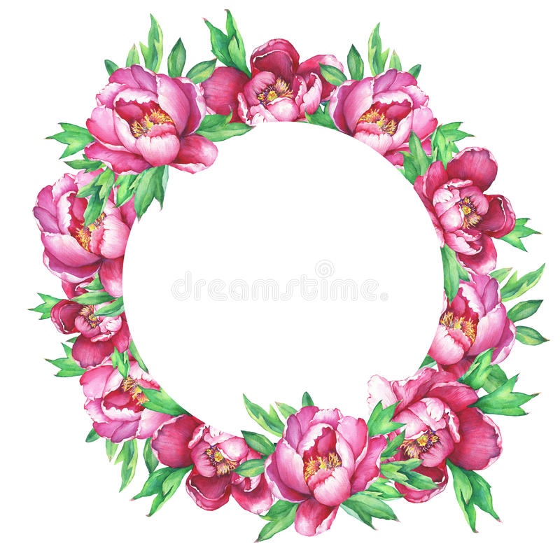 Round frame with flowering pink peonies, isolated on white background. vector illustration