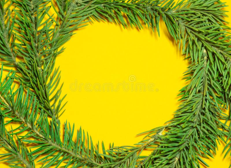 Round frame made of fir branches royalty free stock images