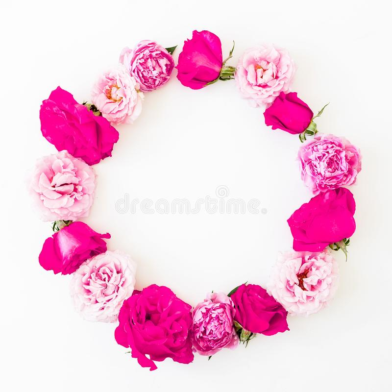 Round frame of pink ranunculus flowers, roses and leaves on white background. Floral lifestyle composition. Flat lay, top view. Round frame of pink ranunculus stock photo
