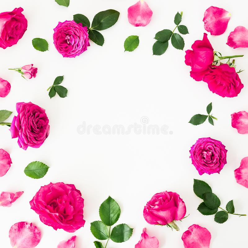 Round frame of pink ranunculus flowers, roses and leaves on white background. Floral lifestyle composition. Flat lay, top view. Round frame of pink ranunculus royalty free stock photos
