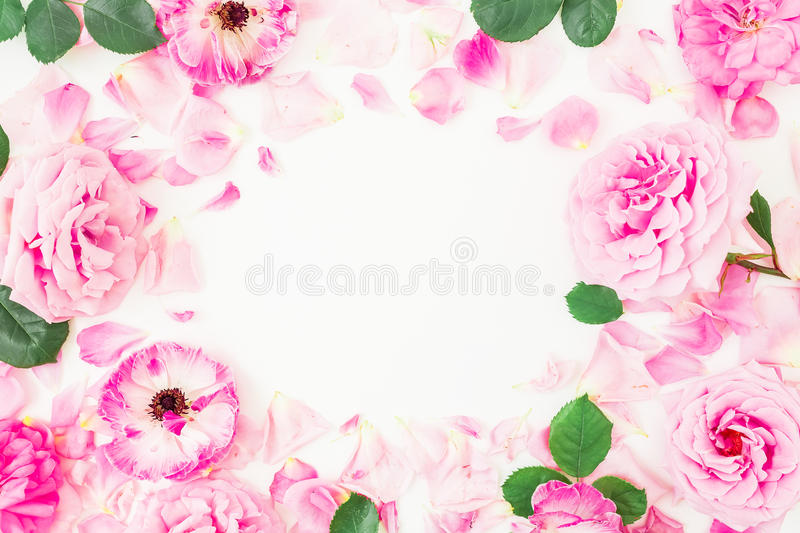 Round frame of pink ranunculus flowers, roses, petals and leaves on white background. Floral lifestyle composition. Flat lay, top royalty free stock image