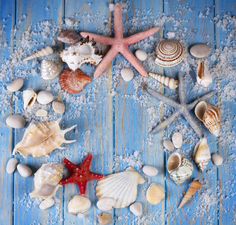 Round frame of seashells and starfishes on blue wooden planks royalty free stock images