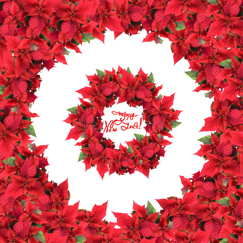 Download Round Frame With Wreath From Christmas Flowers Stock Image - Image: 14858331