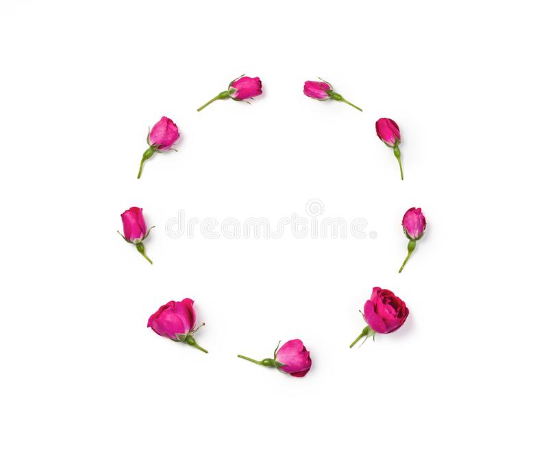 Round frame wreath made of rosebuds isolated on white background. Flat lay. royalty free stock photo