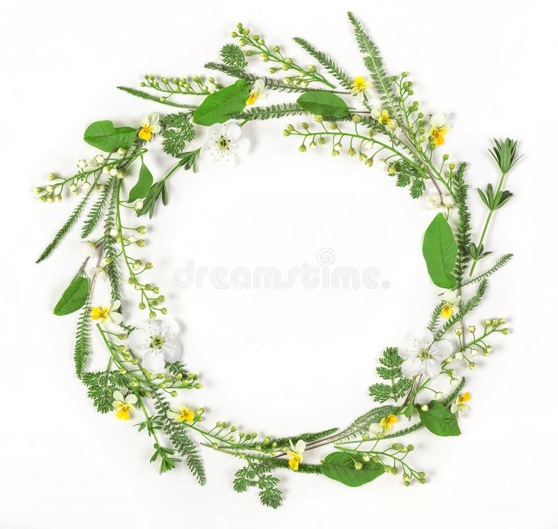 Round frame wreath made of spring flowers and leaves isolated on white background. Flat lay royalty free stock photo