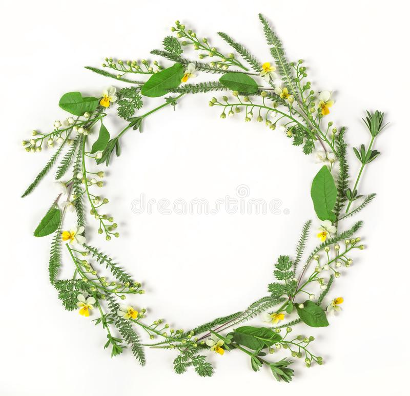 Round frame wreath made of spring flowers and leaves isolated on white background. Flat lay. royalty free stock image
