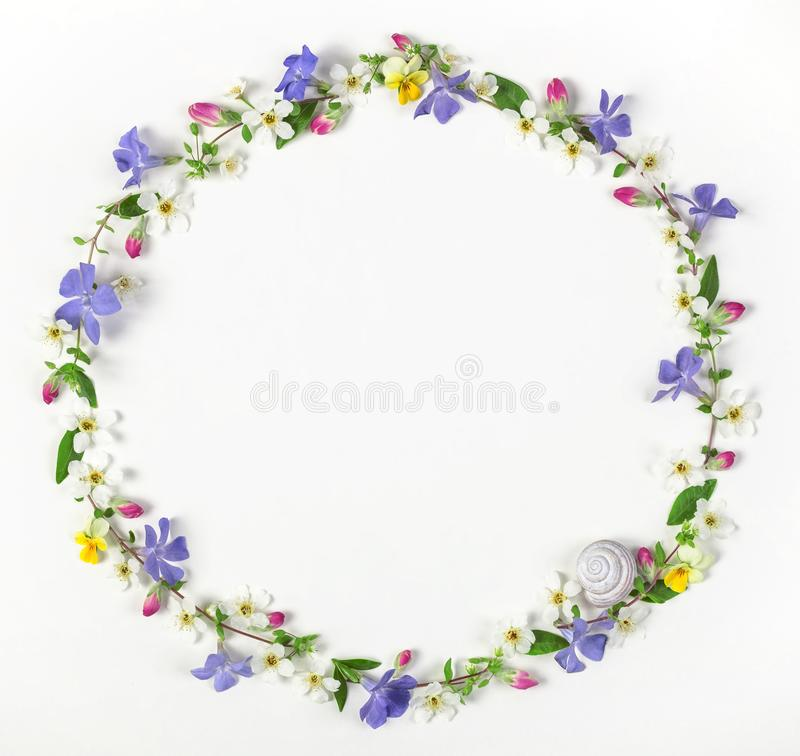 Round frame wreath made of spring wildflowers, lilac flowers, pink buds, leaves and snail shell isolated on white background. stock image