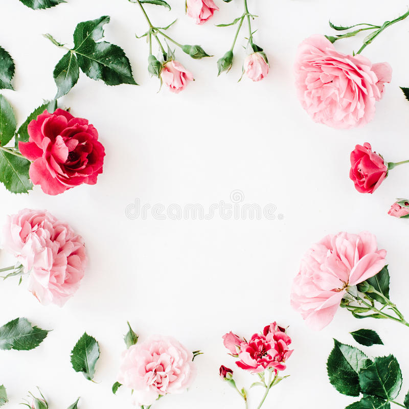 Round frame wreath pattern with roses, pink flower buds, branches and leaves stock image