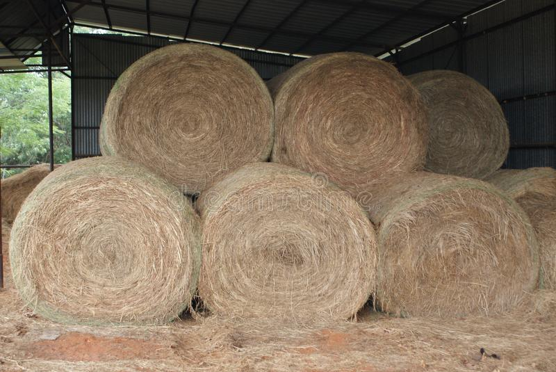 Round Hay Bales In The Barn royalty free stock photos