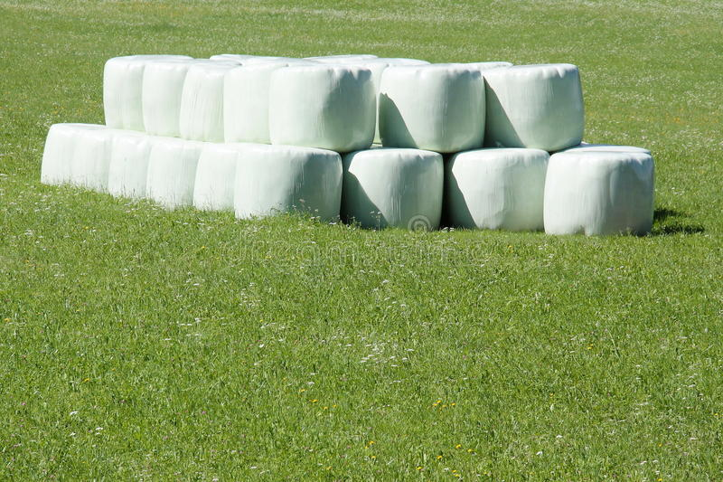 Round hay bales stock photography