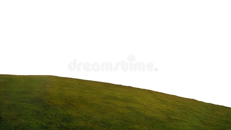 Round hill of grass isolated on white background stock image