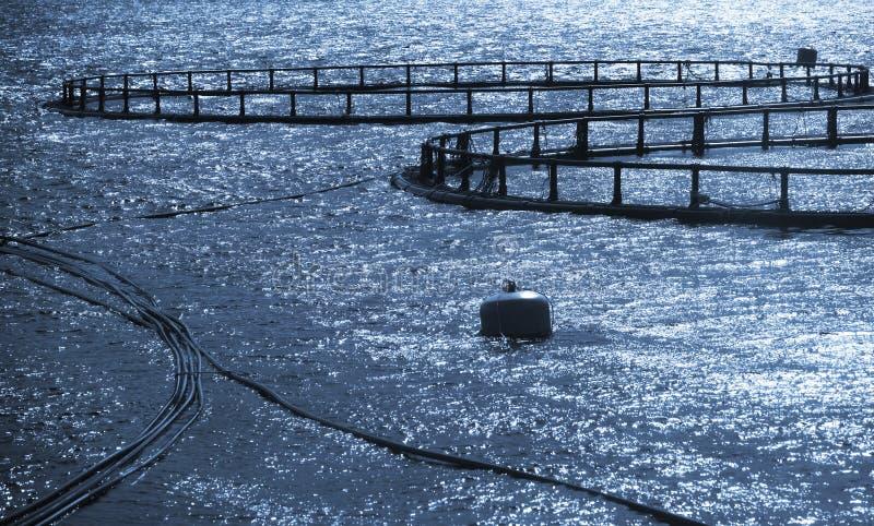 Round klatki rybi gospodarstwo rolne obraz stock