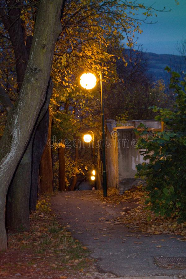 Round lamps are lit in the evening in the park. The lights are on the way.Round street lamps in a city park royalty free stock image