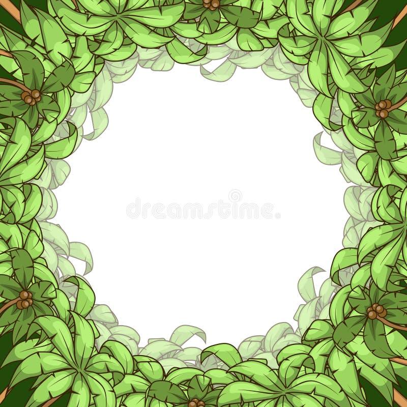 Round palm frame vector illustration. Round palm frame tree circle frame background vector illustration stock illustration