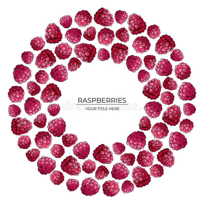 Round pattern of pink raspberry berries on a white background royalty free illustration