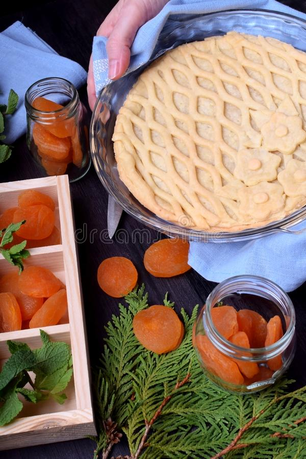 Pie with dried apricots and topped with lattice pastry royalty free stock photography