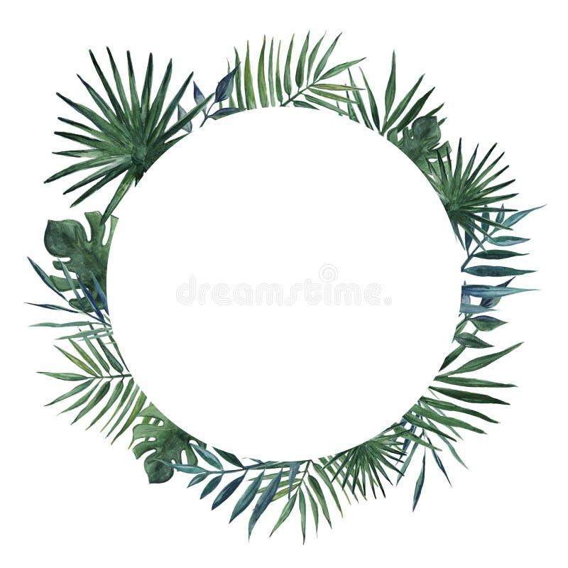 Round rama z palma liśćmi i monstera liśćmi beak dekoracyjnego lataj?cego ilustracyjnego wizerunek sw?j papierowa kawa?ka dym?wki ilustracji