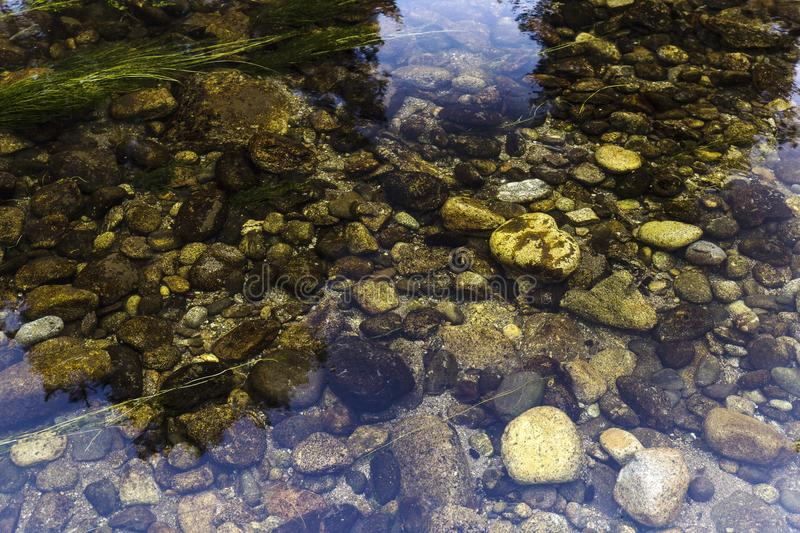 Round stones on the river bottom royalty free stock image