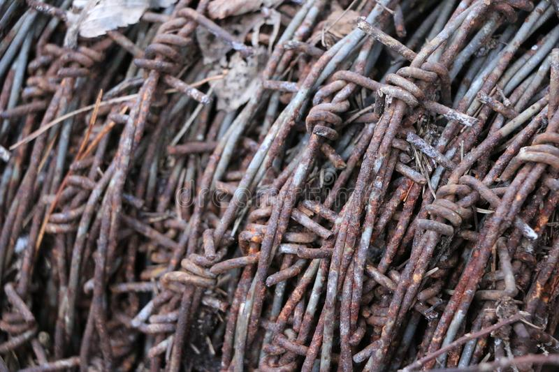 A hank of rusty old barbed wire lies in a forest on dry leaves. Round tangle of rusty old prickly dangerous wire lies in a forest on dry leaves stock photography