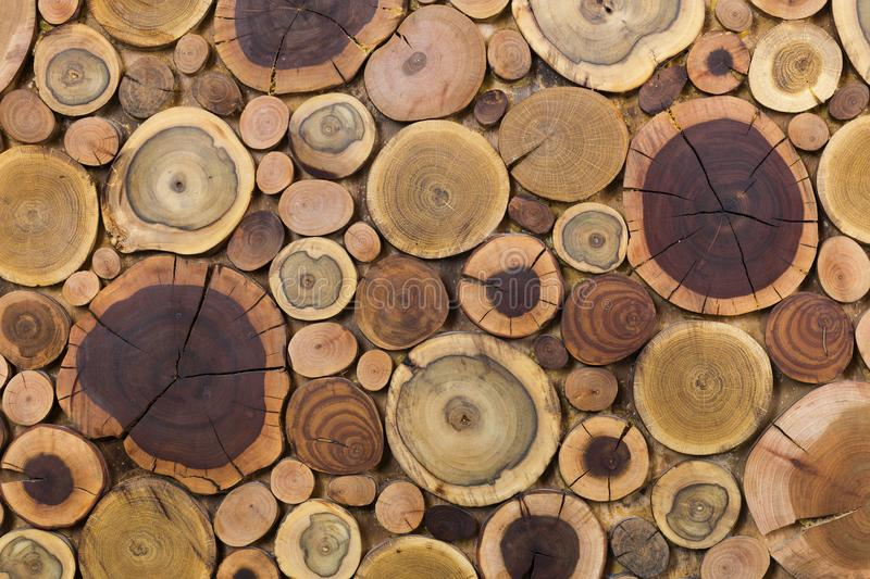 Round wooden unpainted solid natural ecological soft colored brown and yellow stumps background, Tree cut sections different sizes royalty free stock image
