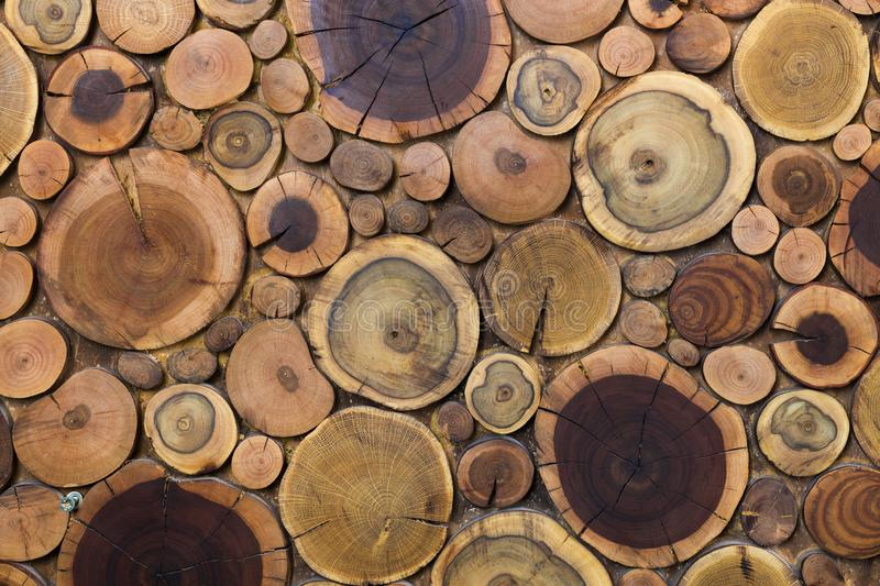 Round wooden unpainted solid natural ecological soft colored brown and yellow stumps background, Tree cut sections different sizes stock photography