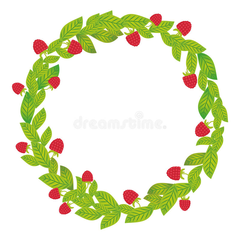 Round wreath with green leaves and raspberries Fresh juicy berries isolated on white background. Vector stock illustration