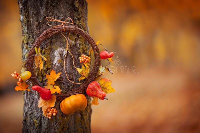 Round wreath with on natural tree on fall background. Sunny autumn day, daylight. Copy space stock photo