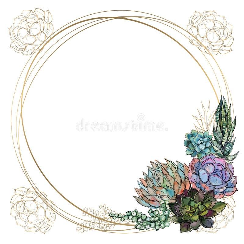 Round złota rama z sukulentami wektor akwarela grafit royalty ilustracja