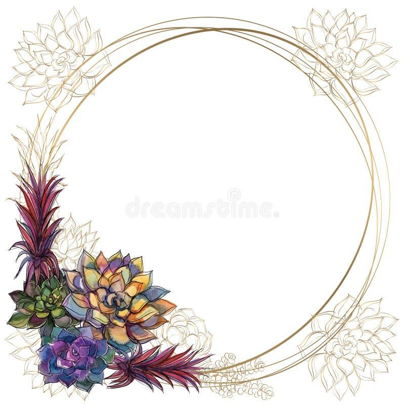 Round złota rama z sukulentami wektor akwarela grafit ilustracji