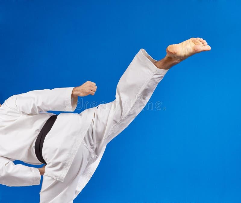 Roundhouse tritt Athletenschläge mit einem schwarzen Gürtel lizenzfreie stockfotos