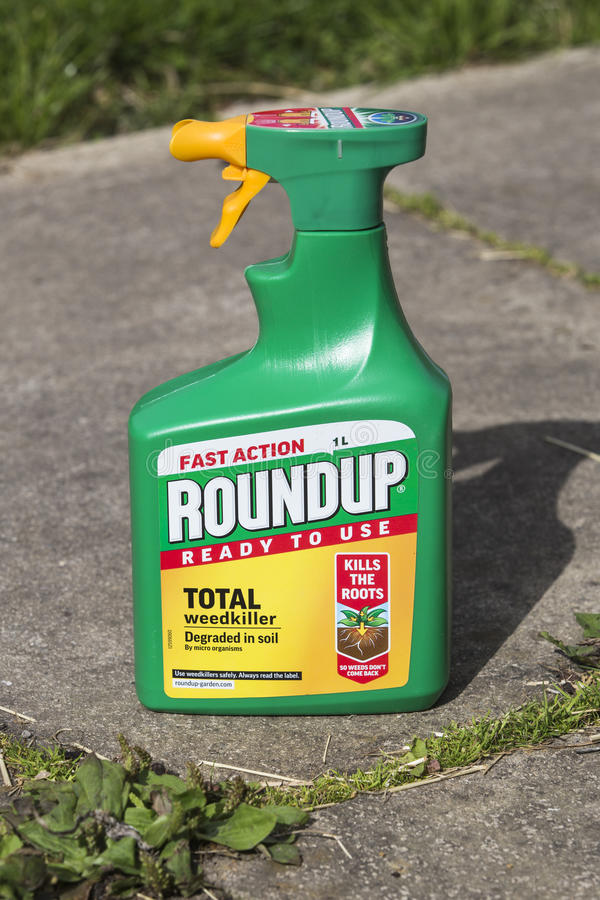 ROUNDUP FAST ACTION WEEDKILLER. LEEDS, UK - 15 AUGUST 2017. ROUNDUP FAST ACTION WEEDKILLER WITH GLYPHOSPHATE BY MONSANTO stock photos